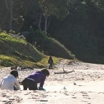 Cooks Beach Artikel