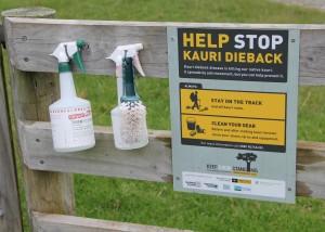 Kauri Dieback Dekontaminations-Kit bei Atiu Creek