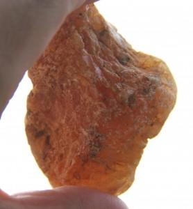 Stück Kauri-Gum, an einem Strand der Coromandel aufgelesen