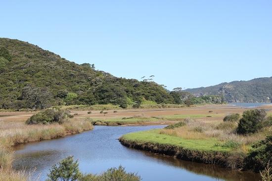 Zwischen Kennedy Bay und Little Bay