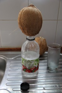 Peters Coconut Water Device