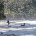 Orokawa Bay: Auch bei schönen Frauen beliebt