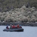 Abenteuer Subantarctica (c) Brent Beaven