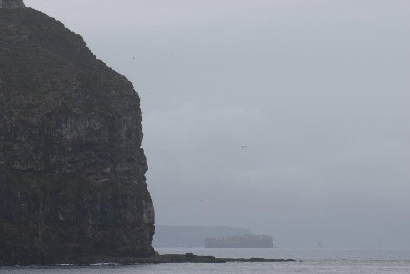 Klippenlandschaft Campbell Island (c) Brent Beaven