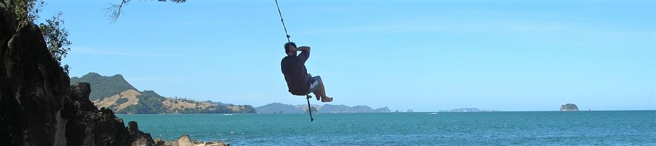 NZ2Go editor on a swing