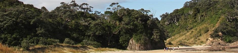 Matapouri-2.jpg