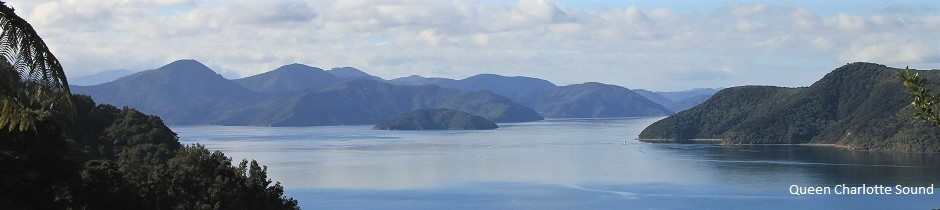 Queen Charlotte Sound, near Picton, New Zealand