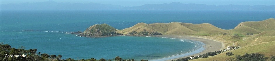 Lonely bay, Coromandel peninsula, New Zealand
