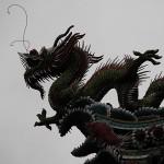 Dragon (c) NZ2go.de