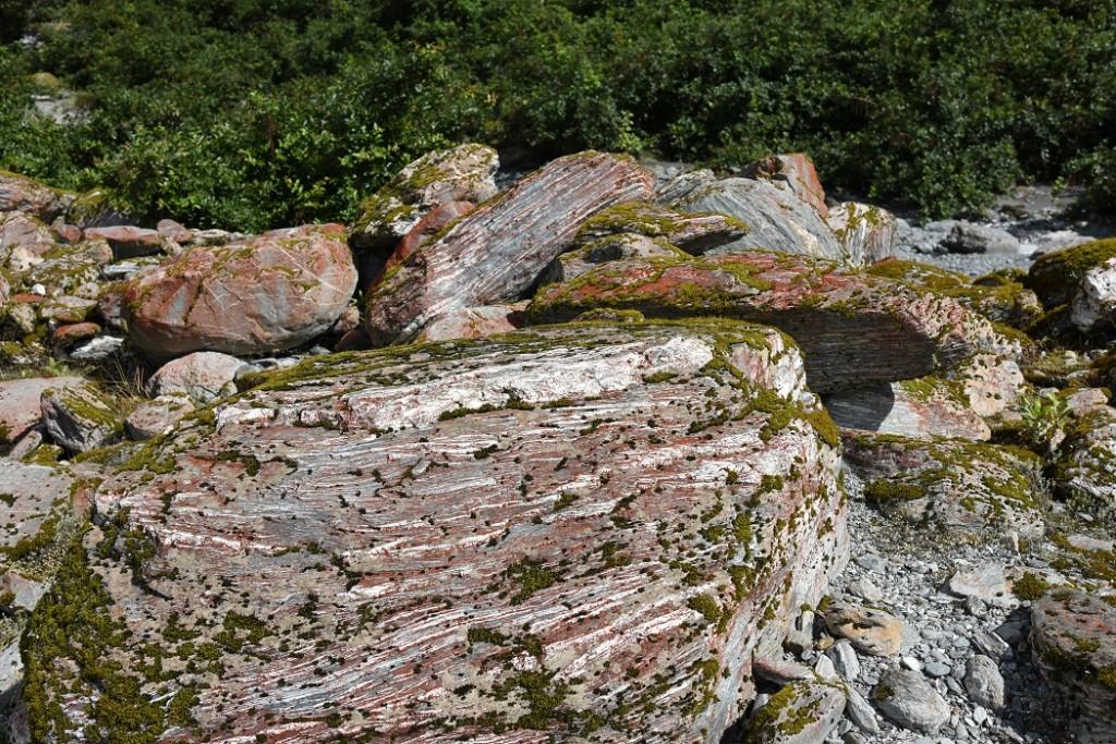 Typisch Westland: interessante rote Flechten auf Granit (c) NZ2Go.de