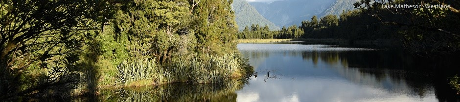 Lake Matheson near Franz Josef Glacier, West Coast, New Zealand