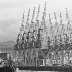 Wellington wharf (c) ATL Wellington
